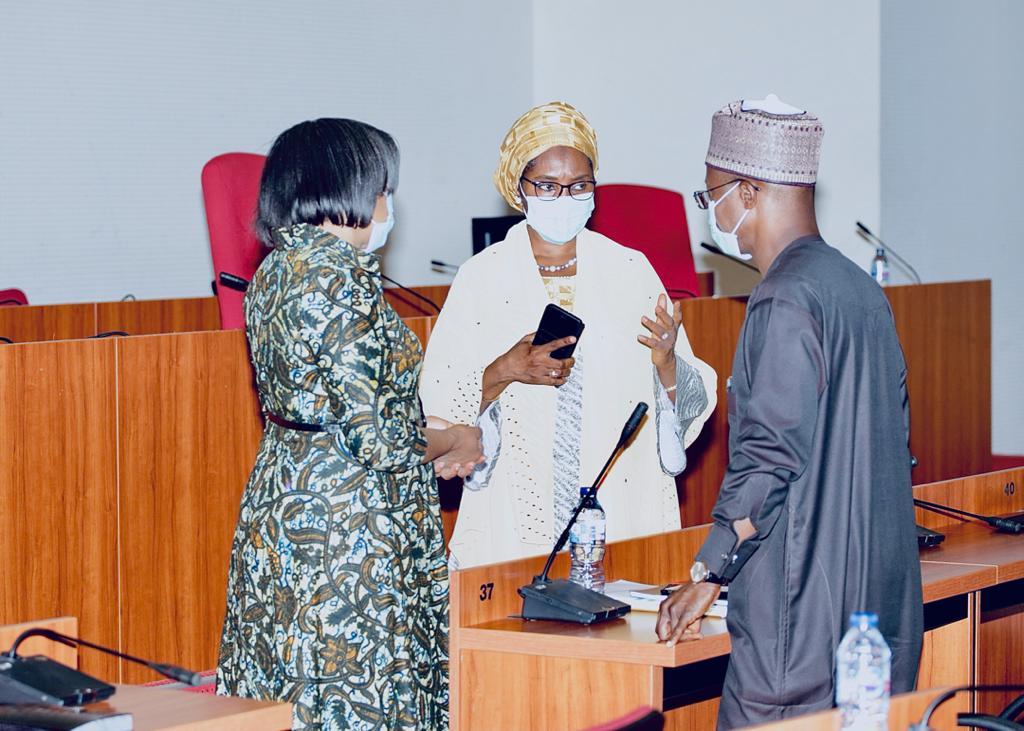 FEC Approves Revised 2020 Budget, Amendments Of Medium-Term Expenditure Framework For 2020-2022 4